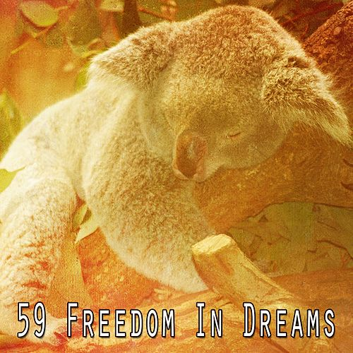 59 Freedom in Dreams von Spa Relaxation
