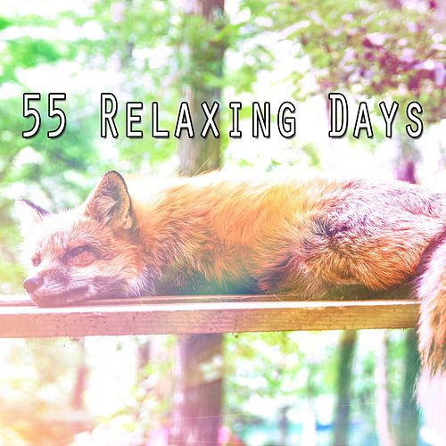 55 Relaxing Days by Sounds Of Nature