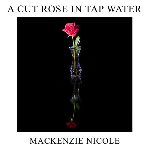 A Cut Rose In Tap Water by Mackenzie Nicole