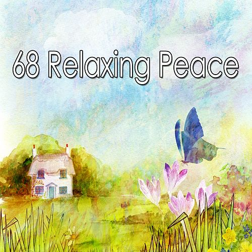 68 Relaxing Peace de Spa Relaxation