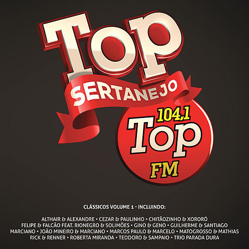 Top Sertanejo: Top 104,1 Fm Clássicos, Vol. 1 de Various Artists
