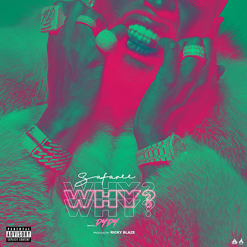 Why? (feat. DYDY) von Safaree