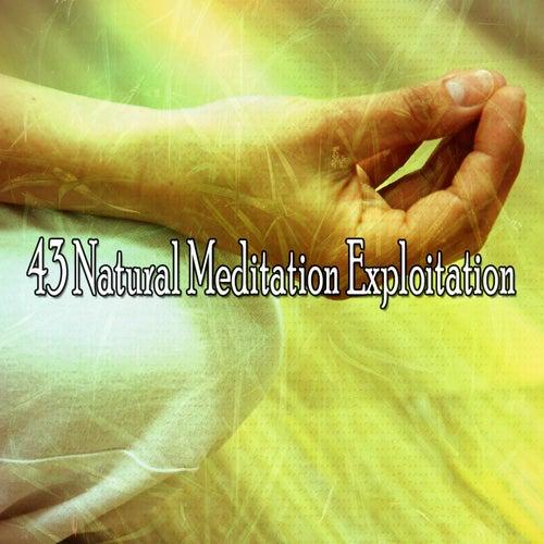 43 Natural Meditation Exploitation van Yoga