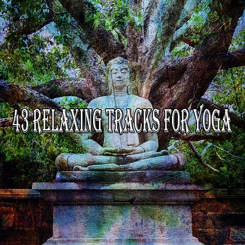 43 Relaxing Tracks for Yoga von Study Concentration