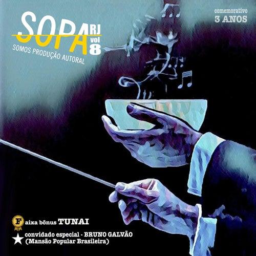 Sopa Rj, Vol. 8 de Vários Artistas