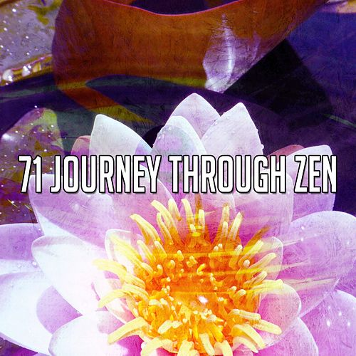 71 Journey Through Zen von Relaxing Mindfulness Meditation Relaxation Maestro