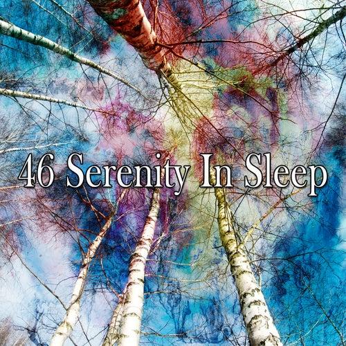 46 Serenity in Sleep by Rockabye Lullaby