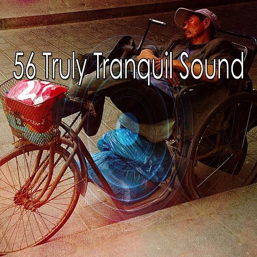 56 Truly Tranquil Sound de Ocean Sounds Collection (1)