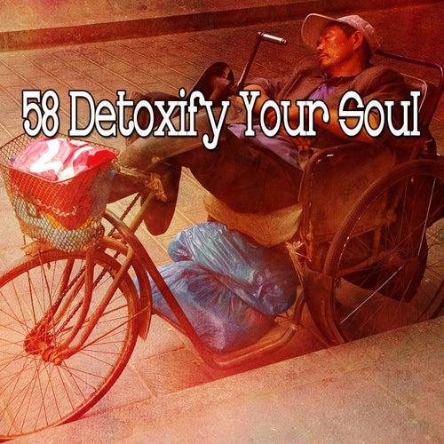 58 Detoxify Your Soul de Lullaby Land