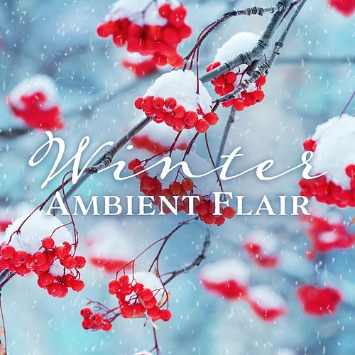 Winter Ambient Flair von Various Artists