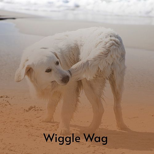Wiggle Wag di Shirley Collins, The Browns, Lefty Frizzell, Sonny James, Tommy Duncan, The Stanley Brothers, Faron Young, Joseph Emmett Mainer Mountaineers, Marty Robbins, Burl Ives, Don Gibson, Tex Williams