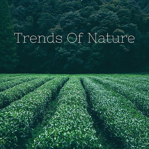 Trends of Nature by Nature Sounds (1)