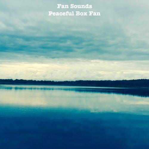 Peaceful Box Fan by Fan Sounds
