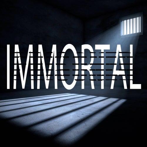 Immortal (Instrumental) von Kph