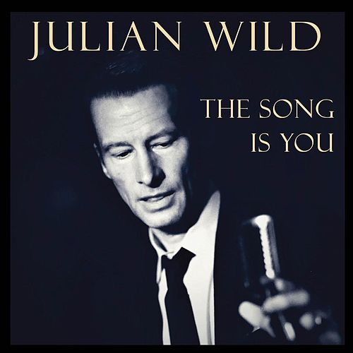 The Song Is You by Julian Wild