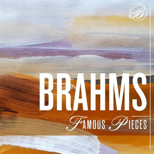 Brahms Famous Pieces de Various Artists