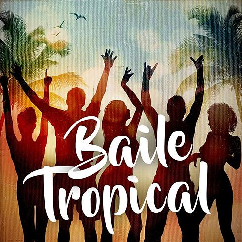 Baile Tropical de Various Artists