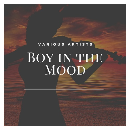 Boy in the Mood by Various Artists