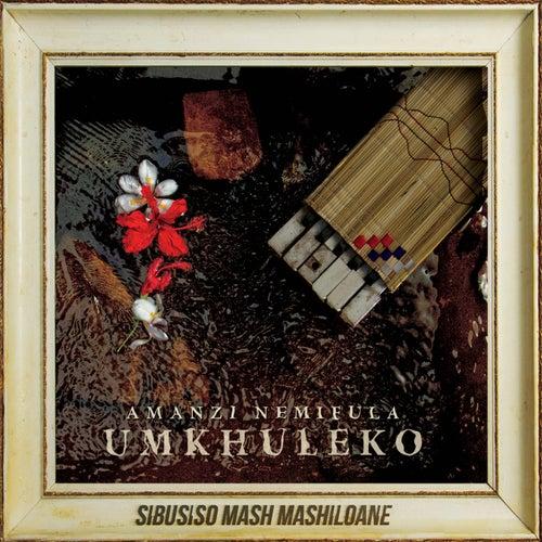 Amanzi Nemifula: Umkhuleko de Sibusiso Mash Mashiloane