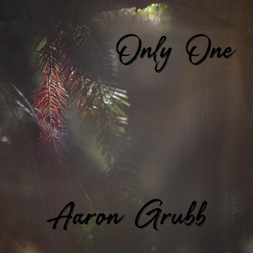 Only One (Instrumental) de Aaron Grubb