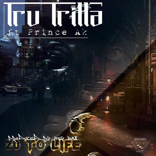20 to Life by Tru Trilla