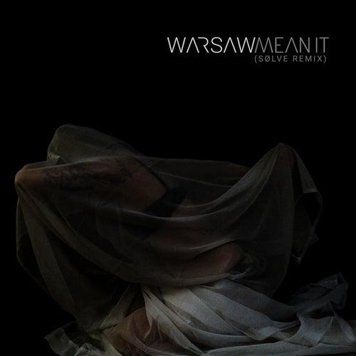Mean It (SØLVE Remix) by Warsaw