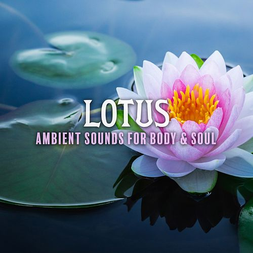 Lotus: Ambient Sounds for Body & Soul von Various Artists