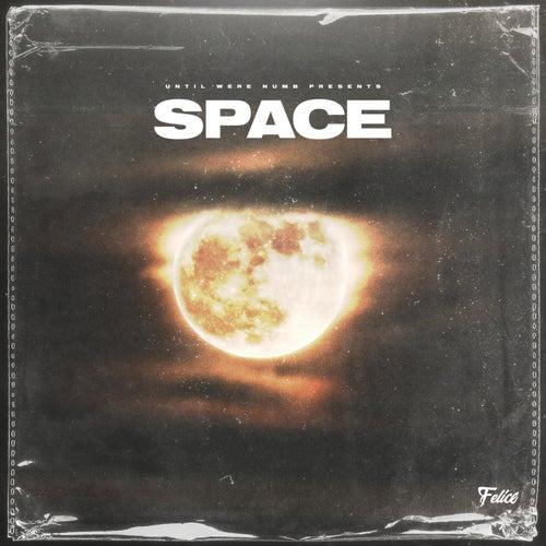 Space de Felice