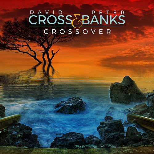 Crossover by David Cross