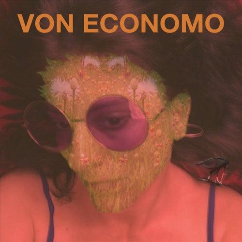Von Economo von Von Economo