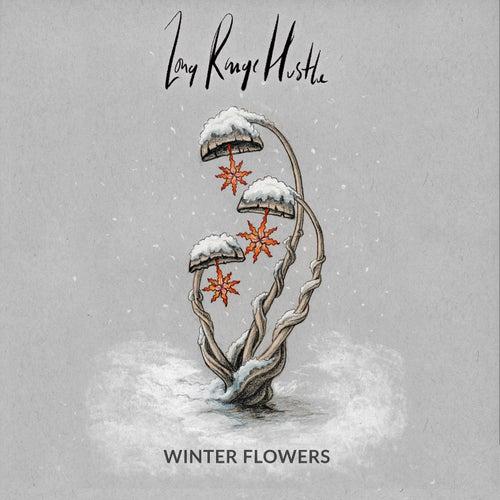 Winter Flowers von Long Range Hustle
