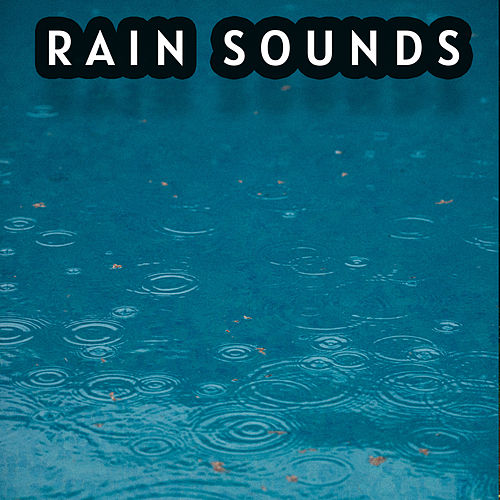 All in One Mesmerizing Rain Sound Collection by Nature Sounds (1)