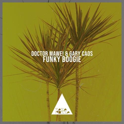 Funky Boogie de Gary Caos