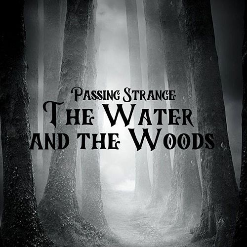 The Water and the Woods by Passing Strange