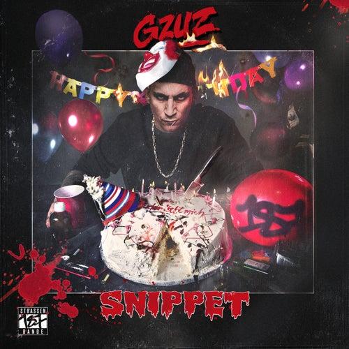 Gzuz (Snippet) von Gzuz