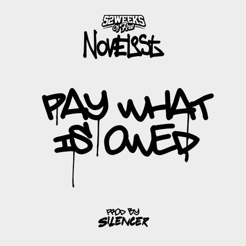 Pay What Is Owed (Dirty Edit) von Novelist