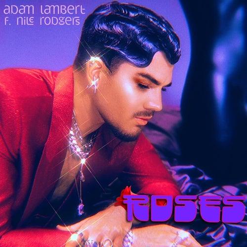 Roses de Adam Lambert