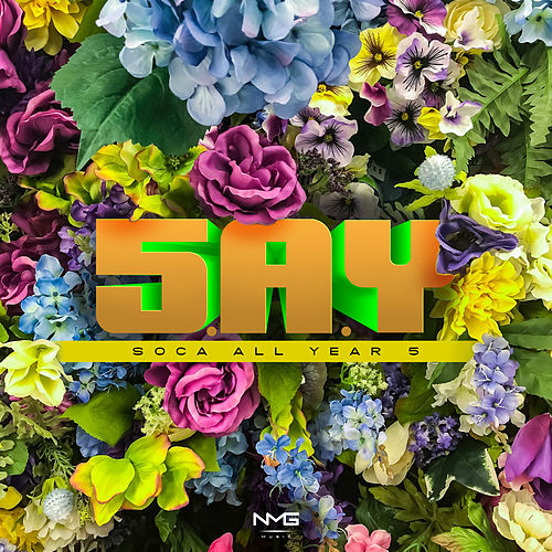 S.A.Y (Soca All Year) 5 by Various Artists