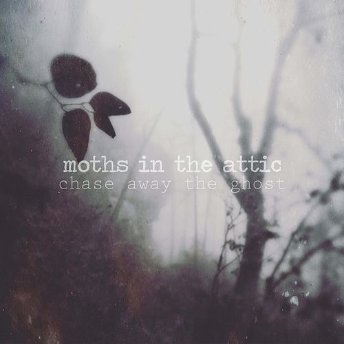 Chase Away the Ghost by Moths in the Attic