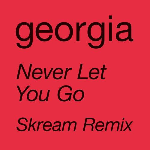 Never Let You Go (Skream Remix) by Georgia