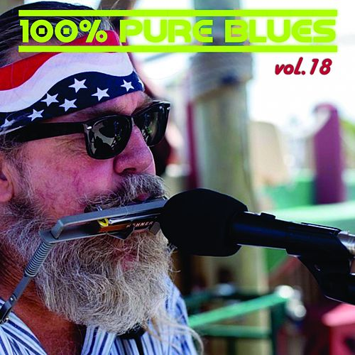 100% Pure Blues, Vol. 18 de Jimmy McGriff, Illinois Jacquet, Eric Von Schmidt, Jim Kweskin, Johnny 'Hammond' Smith, Luther Johnson, Lightnin' Hopkins, Otis Smothers, Magic Sam, Paul Butterfield Blues Band