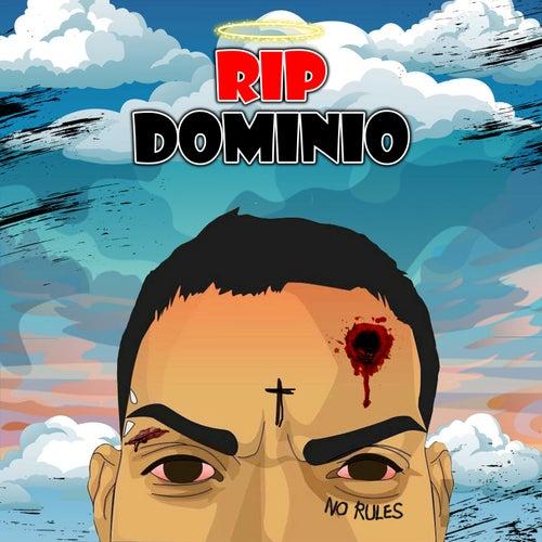 RIP Dominio (feat. Hebreo) di Lyan