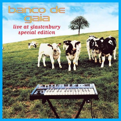 Live at Glastonbury de Banco de Gaia
