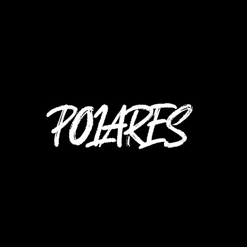 Polares by ZHU