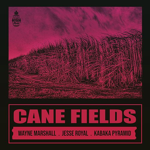 Cane Fields (feat. Wayne Marshall, Jesse Royal & Kabaka Pyramid) de Natural High Music