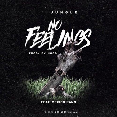 No Feelings von Jungle