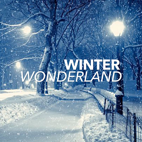 Winter Wonderland de Chill Out