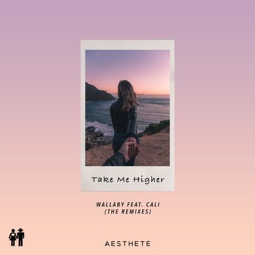 Take Me Higher (Remix) de Wallaby