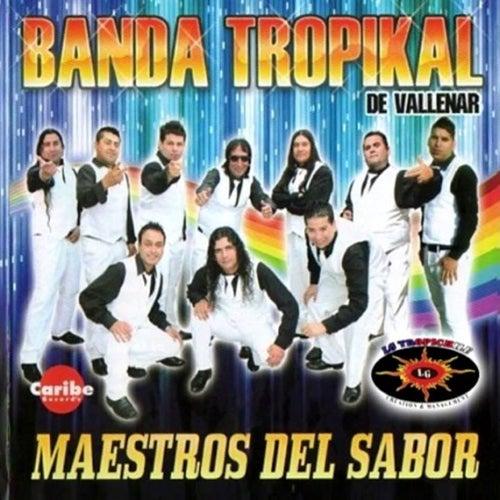 Maestros del Sabor de La Banda Tropikal de Vallenar