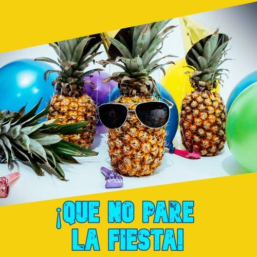 ¡Que no pare la fiesta! von Various Artists